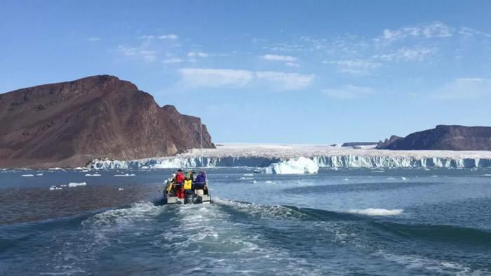 《Journal of Geophysical Research: Oceans》:独角鲸狩猎时会发出如同电锯的声音