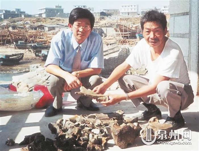 1999年,刘志成(右)和林少川向人们展示在石狮祥芝出水的部分化石(少川供图)