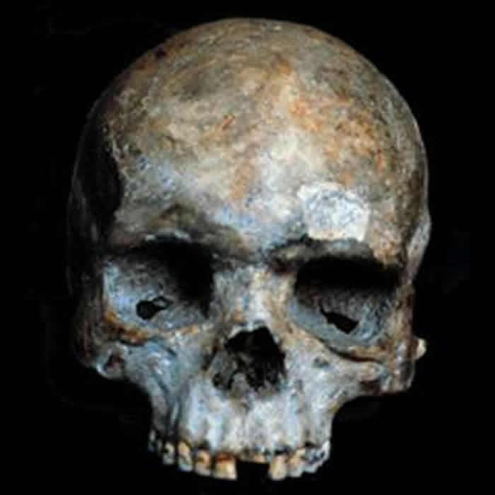 柳江人头骨化石