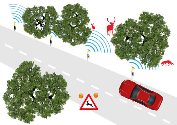 德国研究人员研发Salus汽车雷达 可以区分过马路的是人或动物