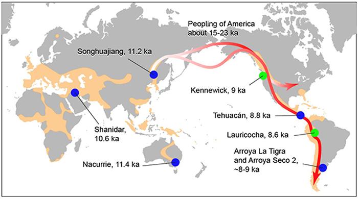 人类在向美洲扩散的过程中有可能把颅骨改形的文化行为也带到了那里(倪喜军 供图)
