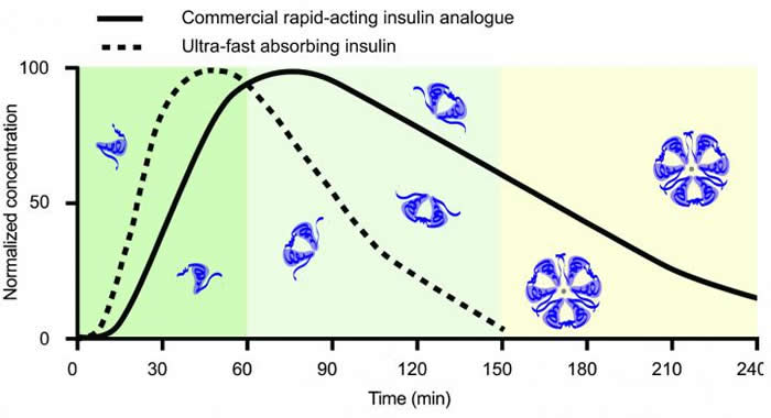 超快起效的胰岛素制剂更快地控制糖尿病患者血糖