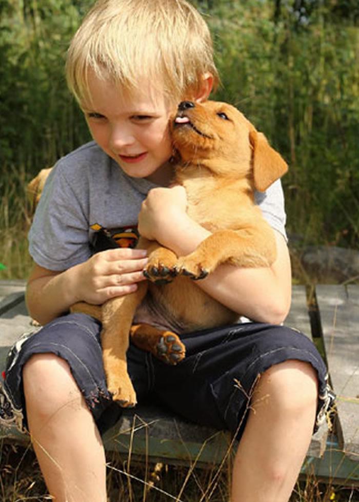 养宠物狗或能改善幼童的社交情绪发展
