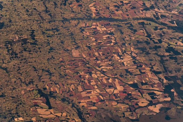 森林砍伐加剧人畜共通传染病的散播。 照片来源:Alexander Gerst(CC BY-SA 2.0)