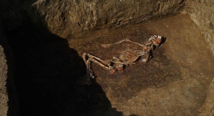 俄罗斯库班地区古墓发现公元前三千年的青铜时代武器 包括投石车和石球等投掷冷兵器