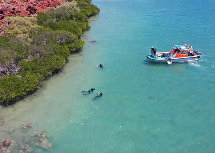 澳洲西北部浅海床地区发现8500年前原住民制造的石器工具