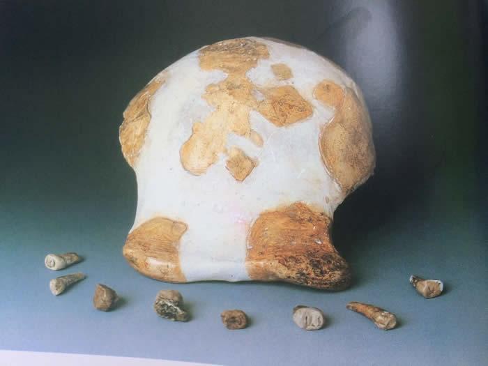 新测年法重新定位沂源猿人化石:年代是64±8万年
