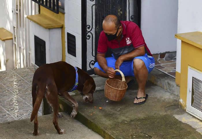狗界货拉拉Ubereats!哥伦比亚超市老板养了一只会送货的巧克力色拉布拉多Eros