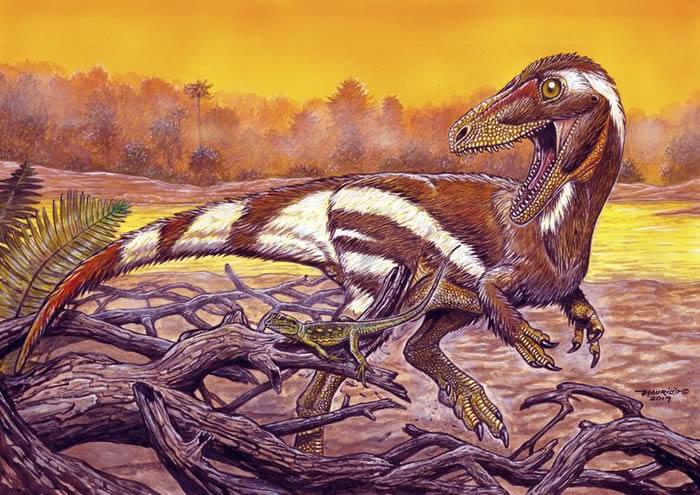 """巴西发现新品种""""阿拉塔龙""""Aratasaurus museunacionali 与中国新疆左龙有亲缘关系"""