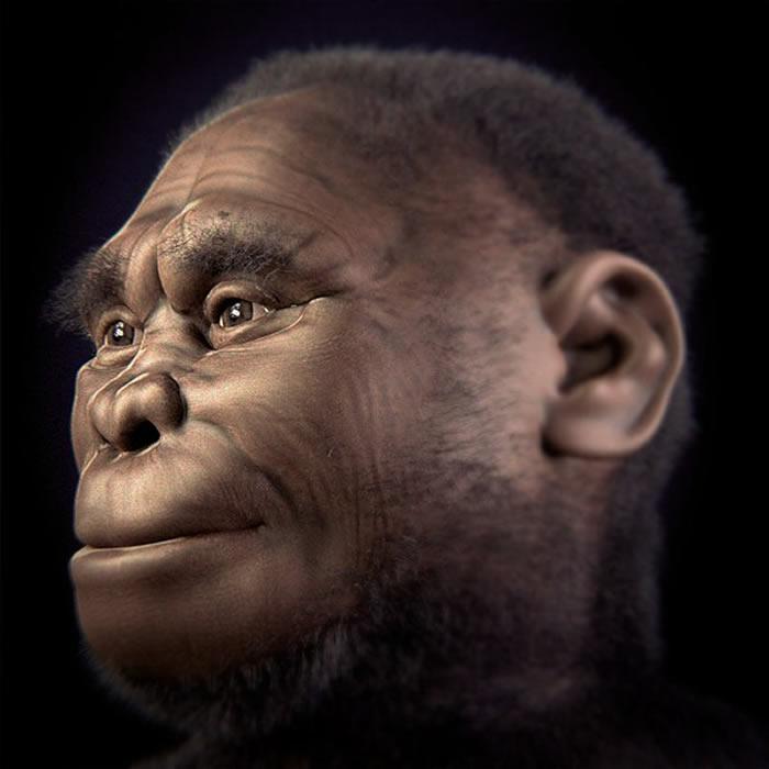 矮小的古人类