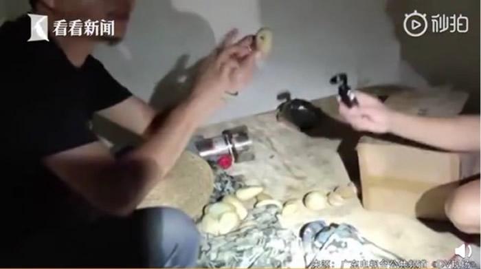 广东省韶关市翁源县男子到农舍发现3公尺长巨蟒在他床上 还散布着20颗蛇蛋
