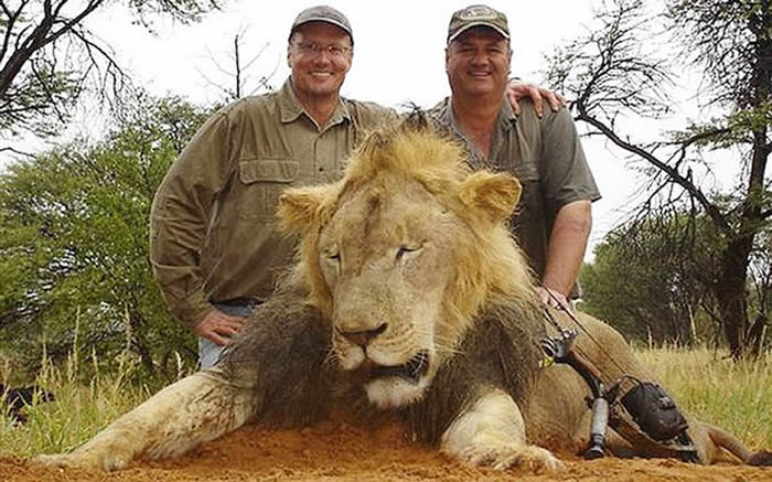 帕尔默(左)跟向导及被杀明星狮合照。