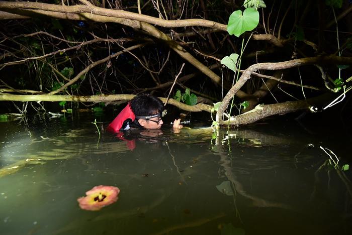 垦管处支持愿意野外调查的研究生,以园区为科研基地进行基础调查。 图为李政璋调查陆蟹栖地现场。 图片来源:李政璋提供。