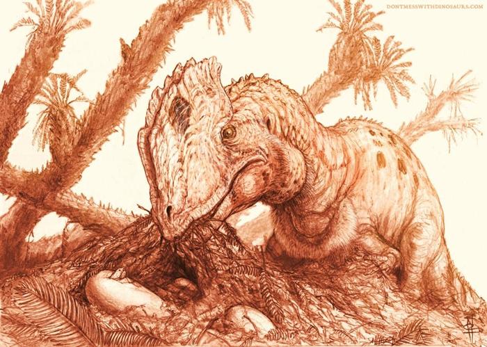 这幅重建图显示一只成年魏氏双脊龙(Dilophosaurus wetherilli)正在照料一窝孵化中的蛋。 ILLUSTRATION BY BRIAN ENG