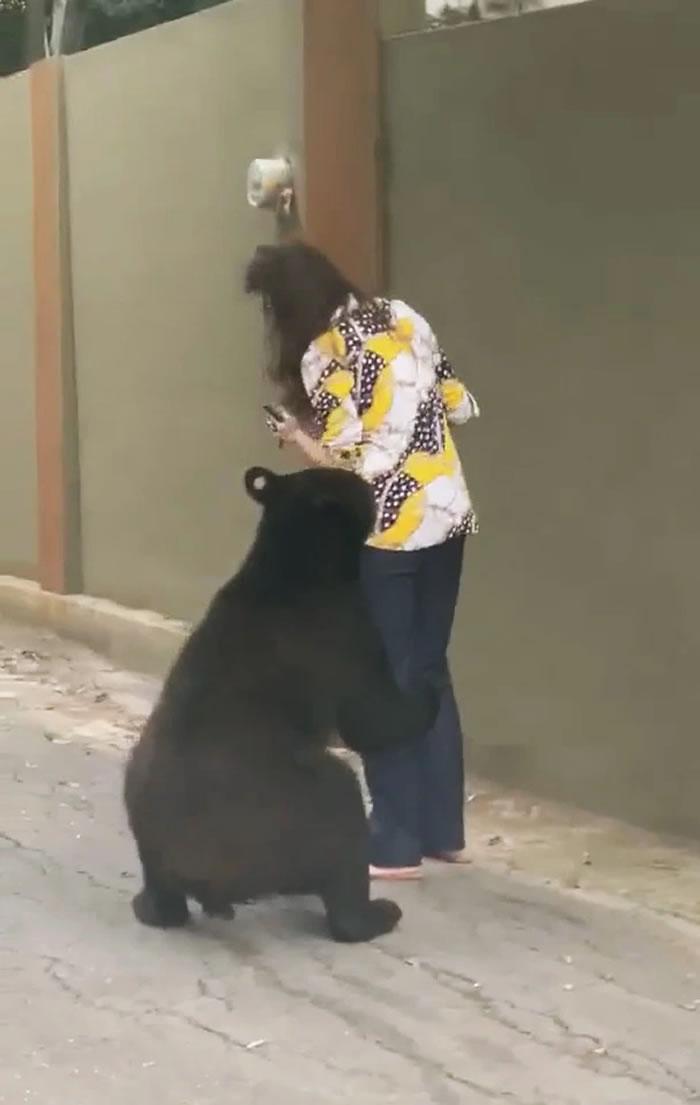 """墨西哥""""色狼""""黑熊疑似又再出现 对一名女性乱闻"""
