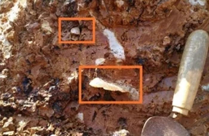 江西瑞昌多地发现旧石器时代石器