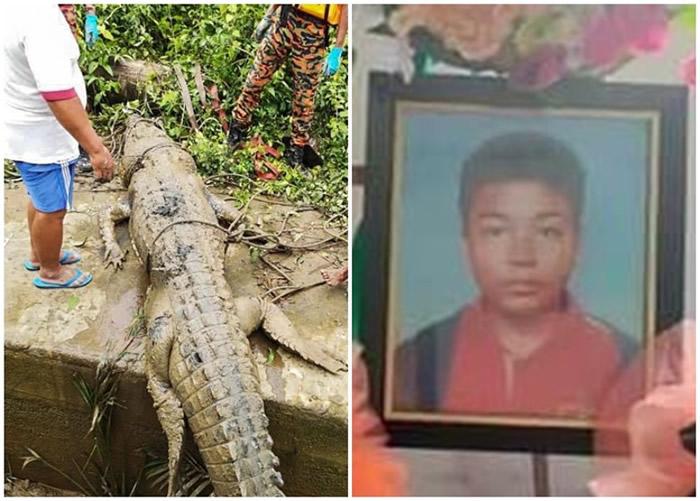 马来西亚发生鳄鱼食人事件 14岁少年被重350公斤巨鳄吞噬