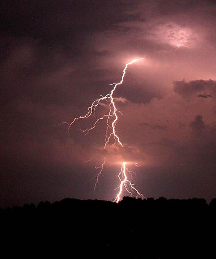 """动物的神秘""""电嗡嗡声""""(electrical hum)可能来自于原始的闪电"""