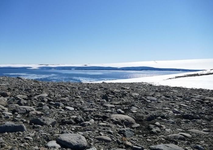 澳洲新南威尔斯大学研究人员在南极发现一种吃空气的细菌