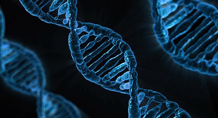 人类DNA中检测出以前从未有过的祖先痕迹