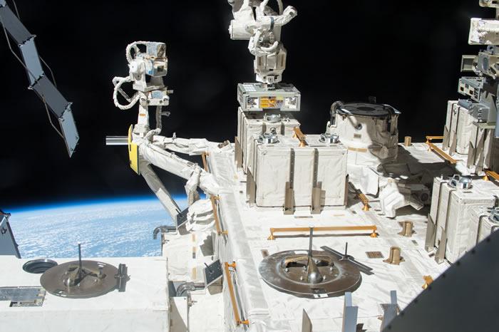 细菌在外太空度过三年得以存活 证明微生物能够与彗星或小行星一起到达地球
