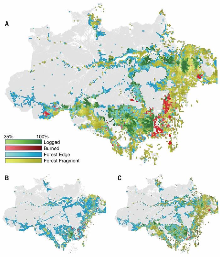 巴西亚马逊森林退化速度超过森林砍伐速度
