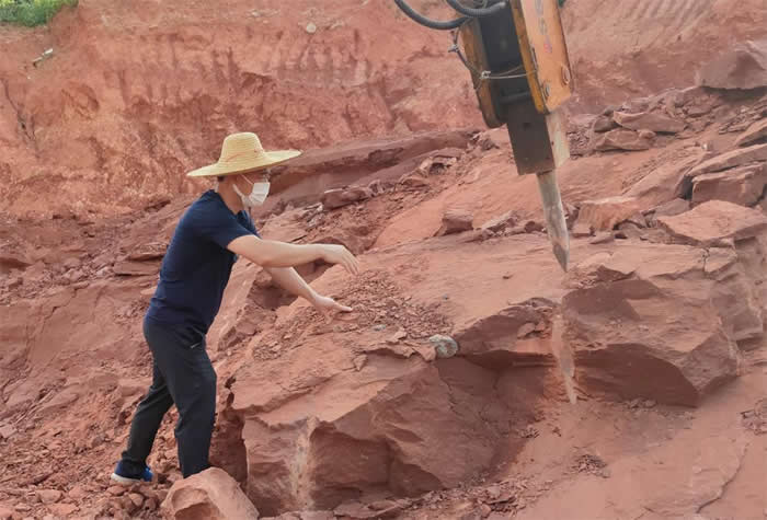 广东省河源市江东新区临江镇联新村一处红砂岩山坡发现恐龙蛋化石