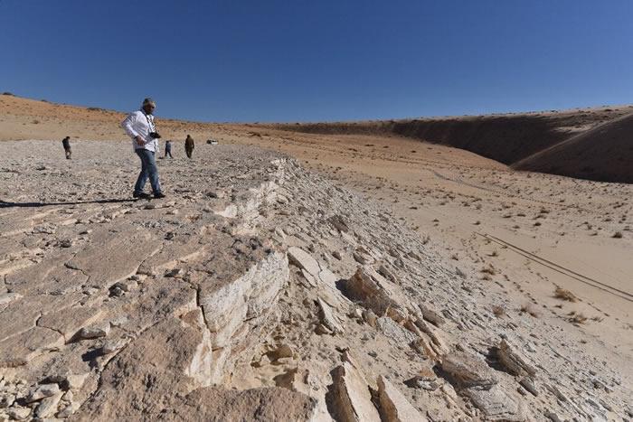 沙特北部泰布克地区发现12万多年前的人类和动物足迹化石