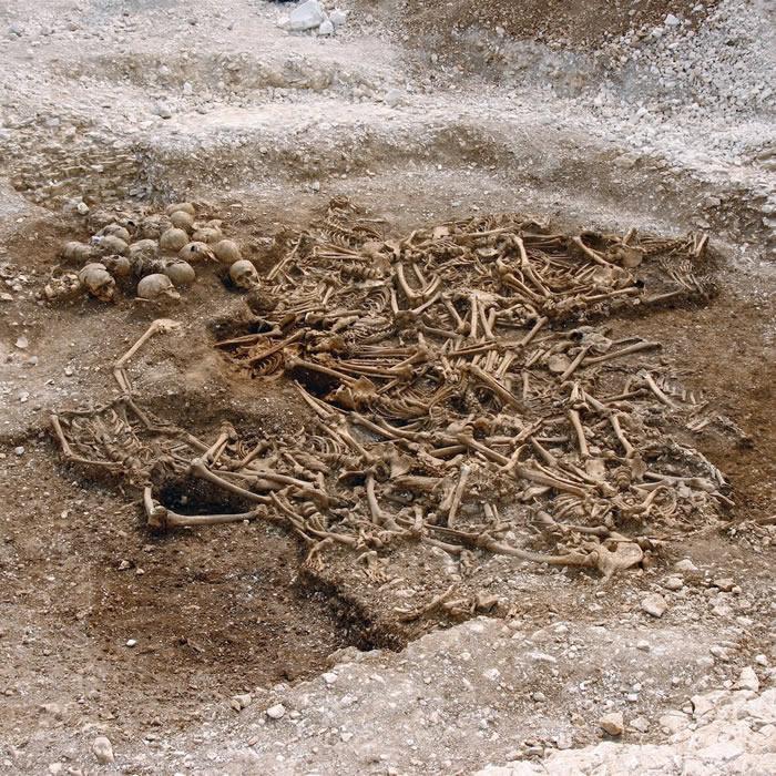 """古人类基因组分析表明:维京人群基因""""足迹""""遍及欧洲"""