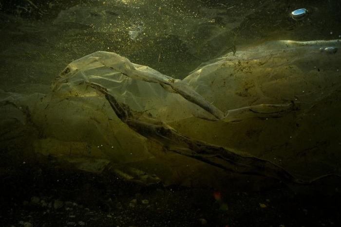 菲律宾自由岛(Freedom Island)生态旅游地区出现的塑胶垃圾。 PHOTOGRAPH BY RANDY OLSON,NAT GEO IMAGE COL