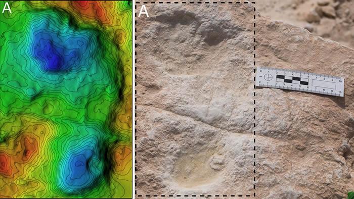 12万年前足迹化石提供了早期人类在阿拉伯半岛居住的证据
