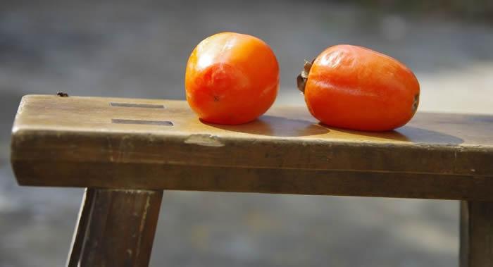 俄罗斯营养医师:柿子中含有大量的鞣酸和植物纤维 对肠道有害