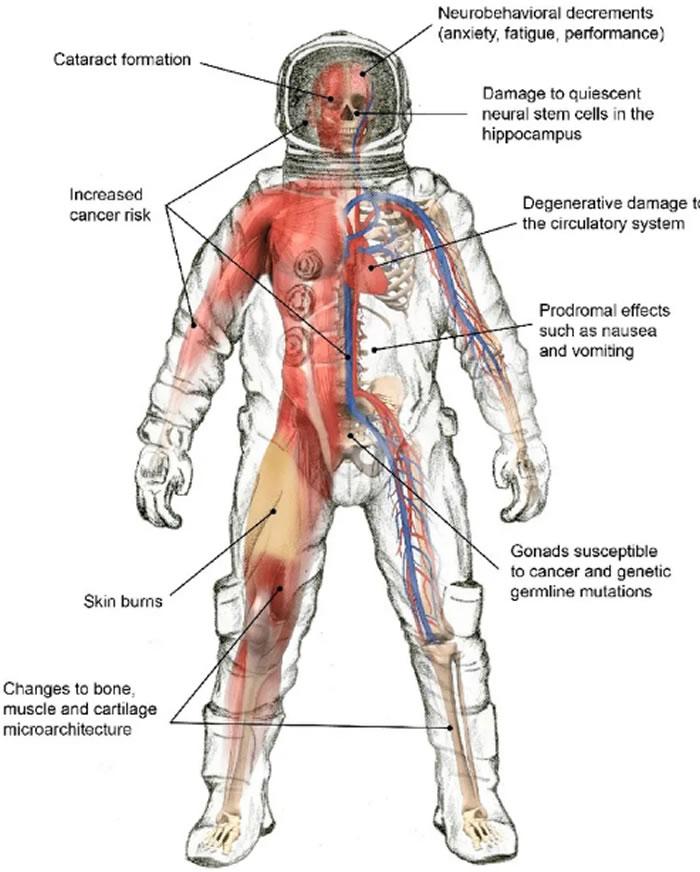 宇航员进入空旷的宇宙空间,将对身体带来致命的伤害。