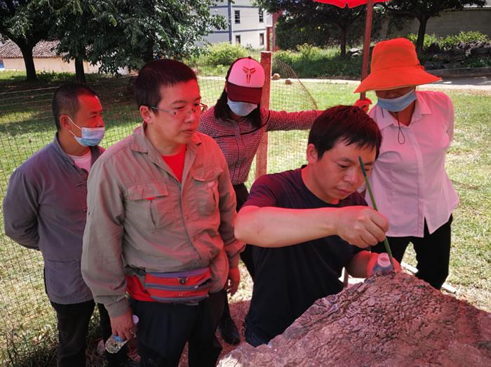 丁今朝在云南丽江为边屯博物馆淳信龙化石进行修理和保护
