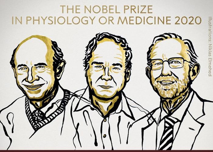 阿尔特、霍顿、莱斯(左起)共同夺得今届医学奖。
