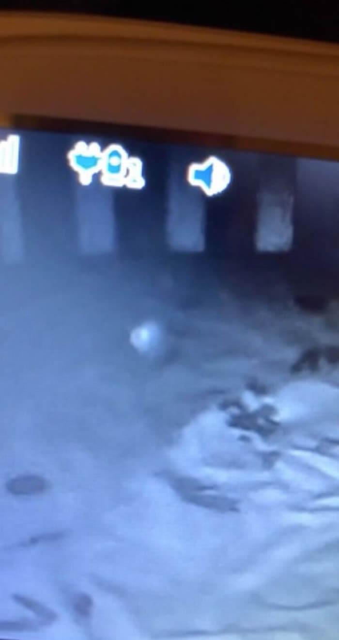 灵异:凌晨查看视频监控惊见白色光球绕婴儿床 新手爸妈吓怕把女儿抱离房间