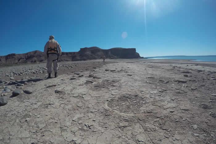 阿根廷巴塔哥尼亚省大坝水位降低 湖岸出现恐龙脚印化石