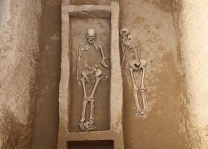 榆林市府谷县田家寨镇寨山遗址发现龙山时代活人殉葬墓 陪葬殉人均为女性曾遭残忍劈砍