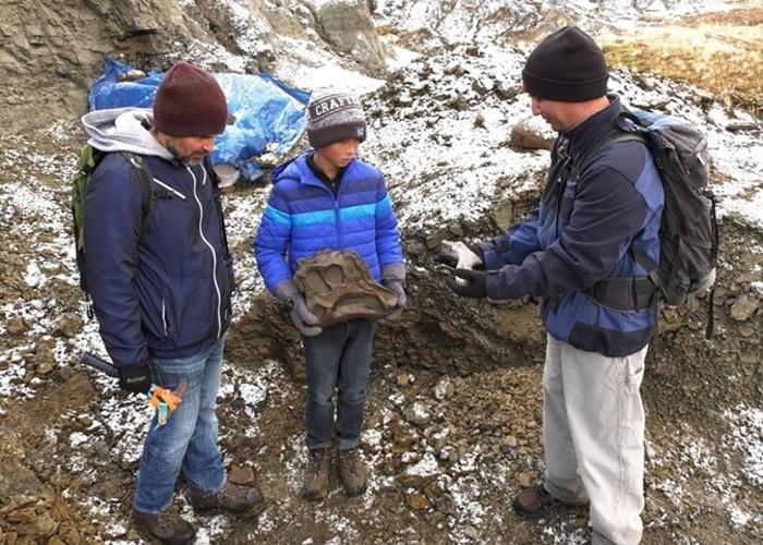 加拿大12岁男童在艾伯塔省登山期间发现6900万年前的鸭嘴龙化石