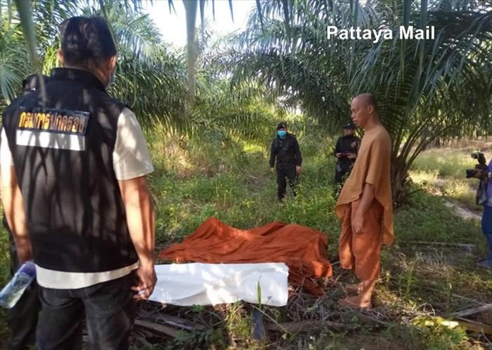 泰国东部春武里府一名出外化缘的僧人惨遭失控巨大野象踩死