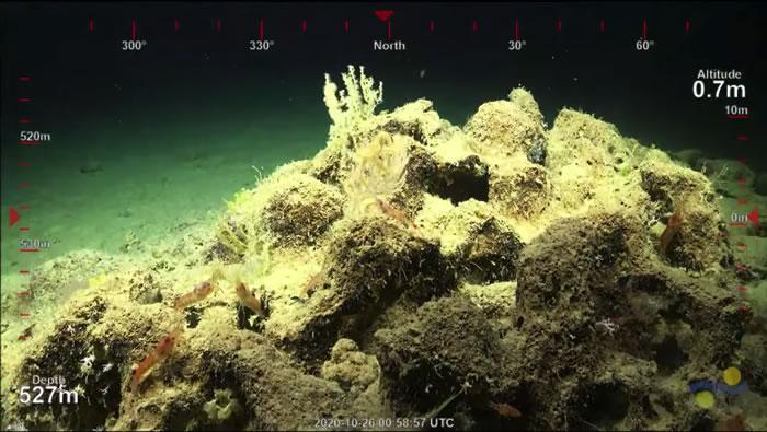 澳大利亚东北海岸大堡礁发现500米高珊瑚礁 高度超过帝国大厦