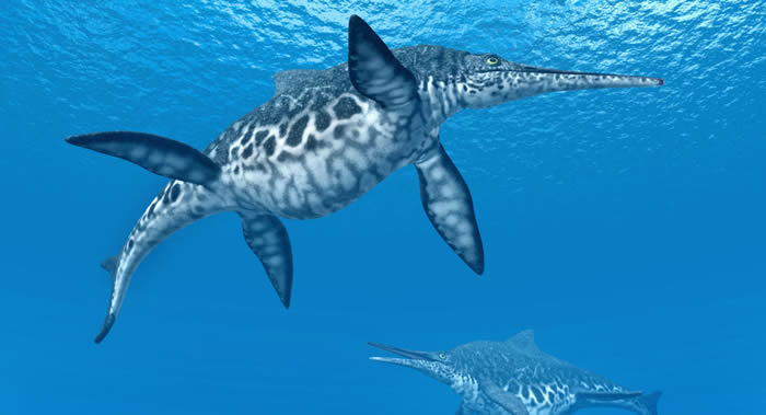 俄罗斯符拉迪沃斯托克发现的鱼龙或是俄境内发现的最古老三叠纪鳞甲目动物