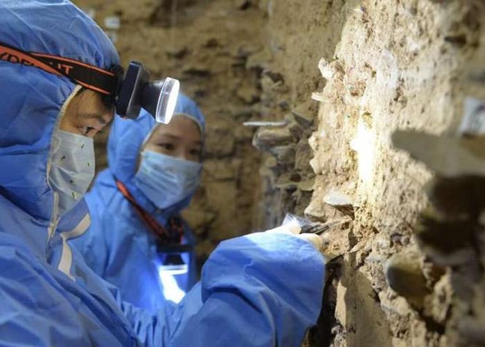 丹尼索瓦人DNA揭示人类占据青藏高原的时间比想象中早