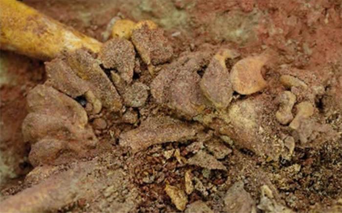 《自然》杂志官网:奥地利发现一对生活在大约3万年前的人类双胞胎婴儿遗骸