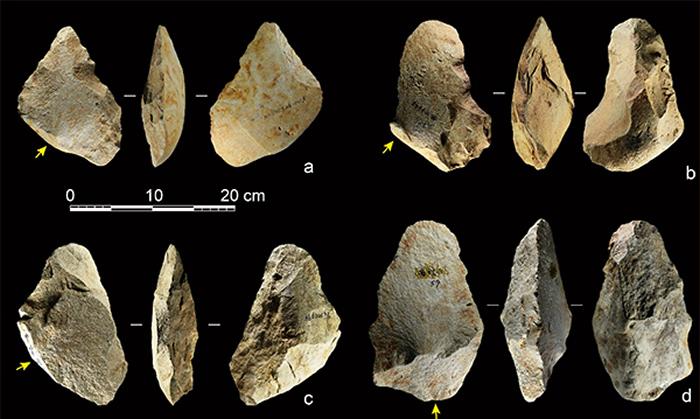 百色盆地以大石片为毛坯的手斧标本,黄色箭头指示打击方向(供图 李浩、雷蕾)