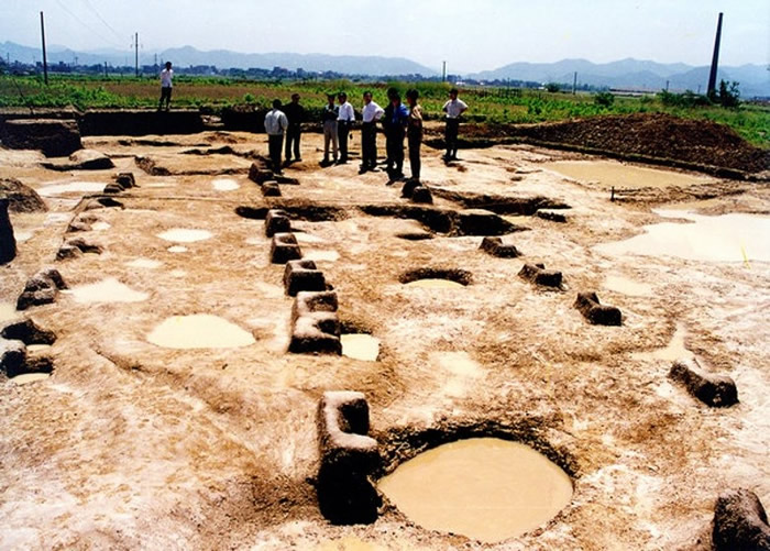 浙江省浦江县上山考古遗址发现1万年前具有驯化特征的水稻植硅体