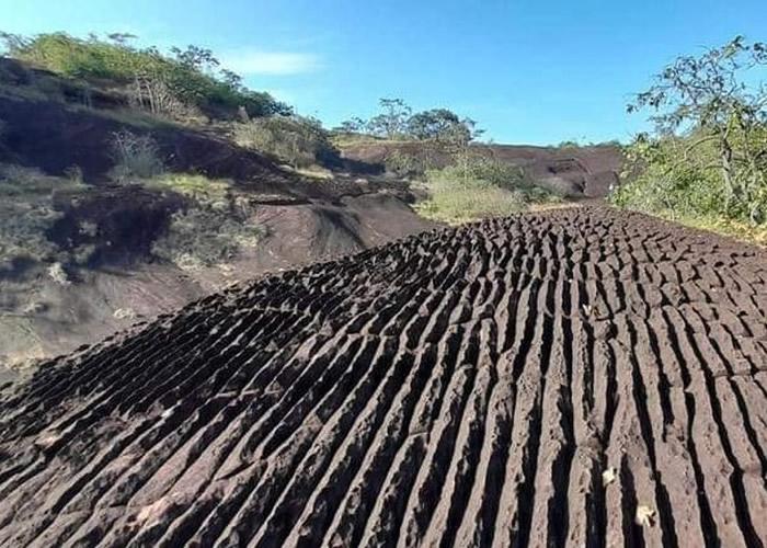 泰国汶甘府的普沃野生动物保护区发现大片地质奇观 石纹形似洗衣板