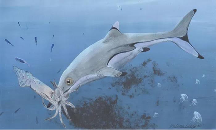 鱼龙吃鱿鱼复原图,基于1.99亿年前的鱼龙的胃内容物所画。图片来源:Julian Kiely