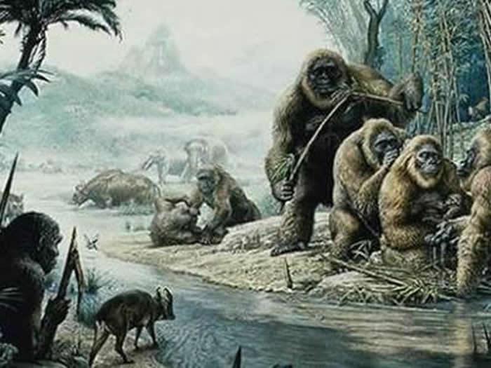 巨猿生活复原图(资料图)