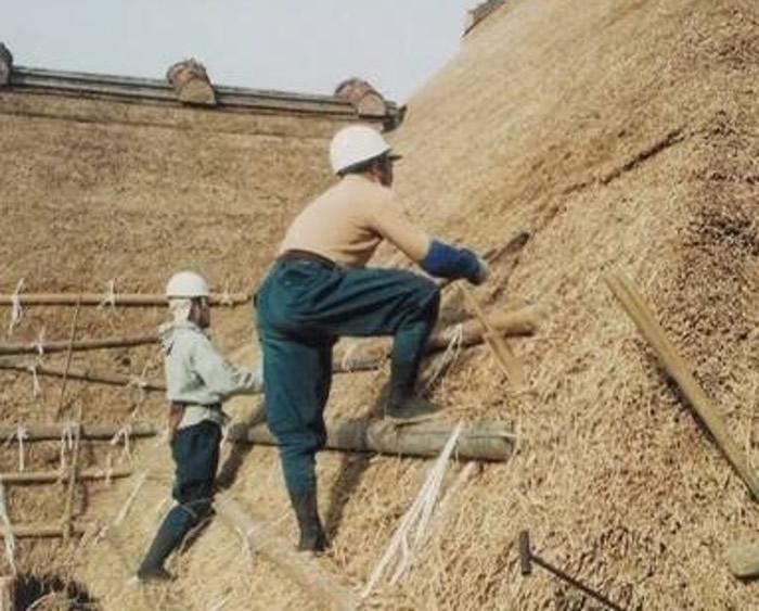 """日本申报的""""传统建筑工匠之技 为继承木造建筑物的传统技术""""列入非物质文化遗产名录"""